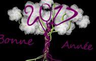 Bonne année 2017 à tous et toutes. Soyez heureux