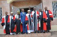 «Un juriste ne tend jamais la main à un dictateur»