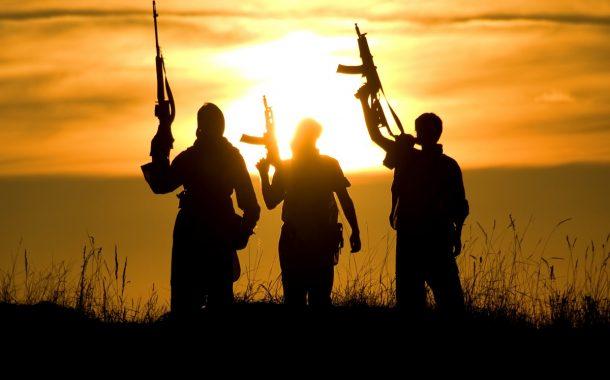 Douze terroristes comoriens identifiés au Mozambique